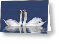110307p052 Greeting Card