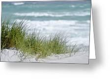 Dune Grass... Greeting Card