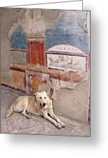 Italy, Campania, Pompeii Greeting Card