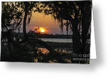 Lowcountry Spanish Moss Sunset Greeting Card