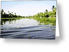 Ripples On The Saltwater Lagoon Greeting Card
