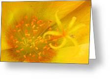 12181 Greeting Card