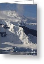 Antarctica Greeting Card