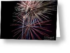 Local Fireworks Greeting Card by Mark Dodd