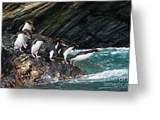 Macaroni Penguin Greeting Card