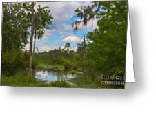 Lowcountry Marsh Greeting Card