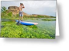 Standup Paddle Board Greeting Card