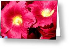 Loveflowers Greeting Card