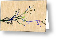 Tree Branch Collection Greeting Card