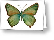 17 Green Hairstreak Butterfly Greeting Card