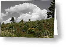 Cloudy With Green Greeting Card