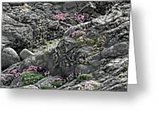 Yachats Oregon Greeting Card