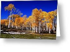Rocky Mountain Fall Greeting Card