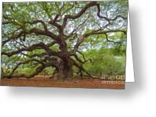 Southern Angel Oak  Greeting Card
