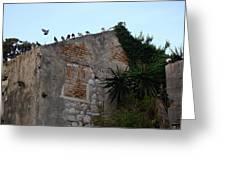 Views From Corfu Greece Greeting Card
