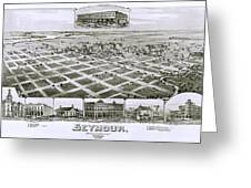 1890 Vintage Map Of Seymour Texas Greeting Card
