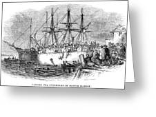 Boston Tea Party, 1773 Greeting Card