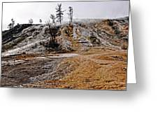 Yellowstone Greeting Card