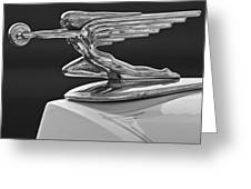 1936 Packard Hood Ornament 3 Greeting Card by Jill Reger