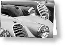 1950 Jaguar Xk120 Roadster Grille 2 Greeting Card