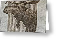 1953 Canada Moose Stamp Greeting Card