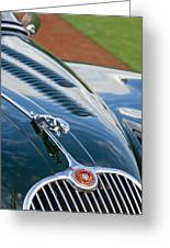 1960 Jaguar Xk 150s Fhc Hood Ornament 3 Greeting Card