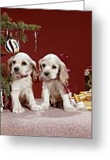 1960s Two Cocker Spaniel Puppies Greeting Card