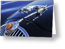 1964 Jaguar Mk2 Saloon Greeting Card