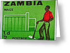 1964 Zambia Farmer Stamp Greeting Card