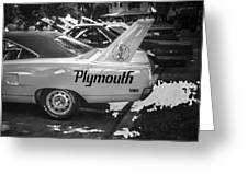 1970 Plymouth Road Runner Hemi Super Bird Bw Greeting Card