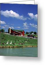 1990s Amish Family Farm Bunker Hill Greeting Card