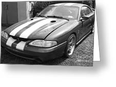 1996 Mustang Cobra In Black And White Greeting Card
