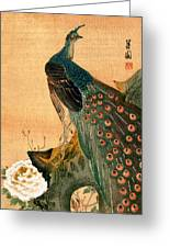 19th C. Japanese Peacock Greeting Card