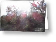 2-20 Manifestations Of Eternity Greeting Card