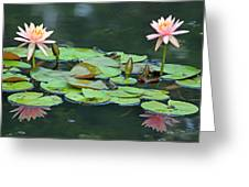 A Day At The Lily Pond Greeting Card