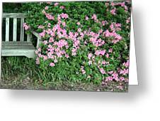 A Seat By The Flowers Greeting Card