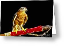 Accipiter Badius - Shikra Fractal Art Greeting Card