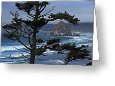 Along The Oregon Coast Greeting Card