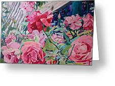 American Beauty Greeting Card