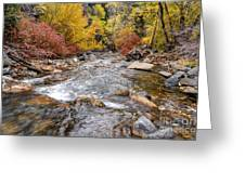 American Fork Canyon Creek In Autumn - Utah Greeting Card