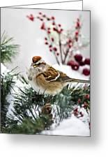 Christmas Sparrow Greeting Card