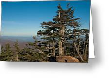 Appalachian Mountains From Mount Mitchell  Greeting Card