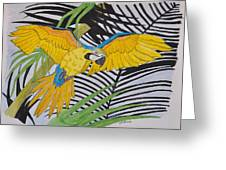 Ara Ararauna Greeting Card
