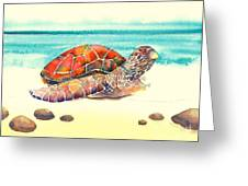 Arrival Greeting Card