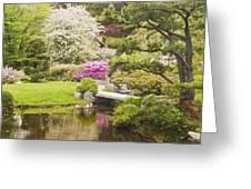 Asticou Azelea Garden - Northeast Harbor - Mount Desert Island - Maine Greeting Card
