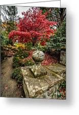 Autumn Path Greeting Card by Adrian Evans