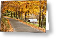 Autumn Road Greeting Card by Brian Jannsen