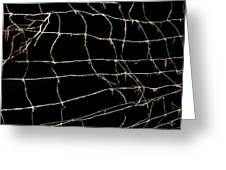 Barbed Wire Greeting Card by Bernard Jaubert