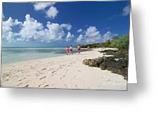 Beach At Coco Cay Greeting Card by Amy Cicconi