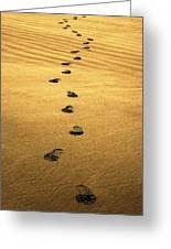 Beach Walker Greeting Card